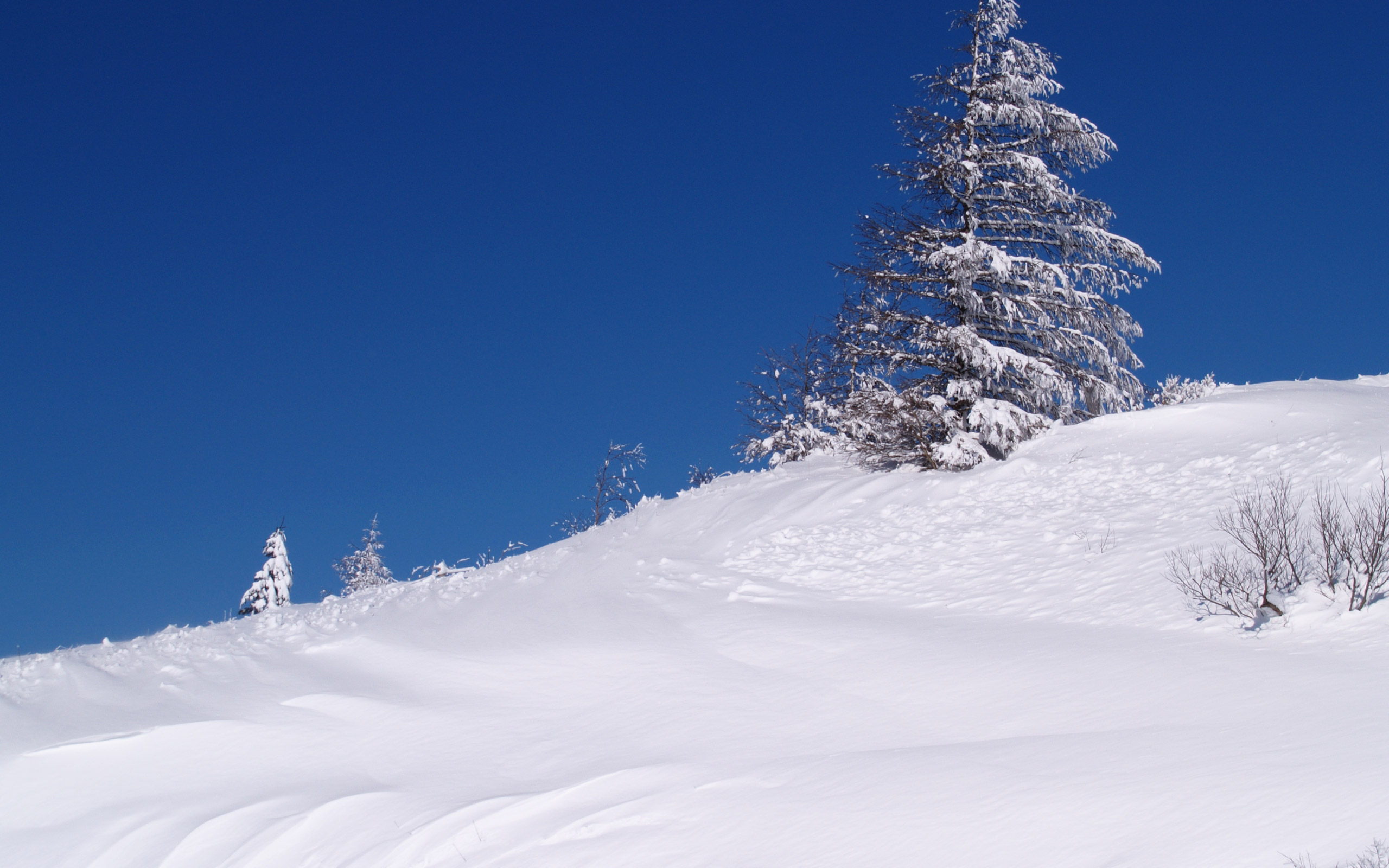 四季 冬の無料壁紙 冬の風景写真 高解像度 高画質