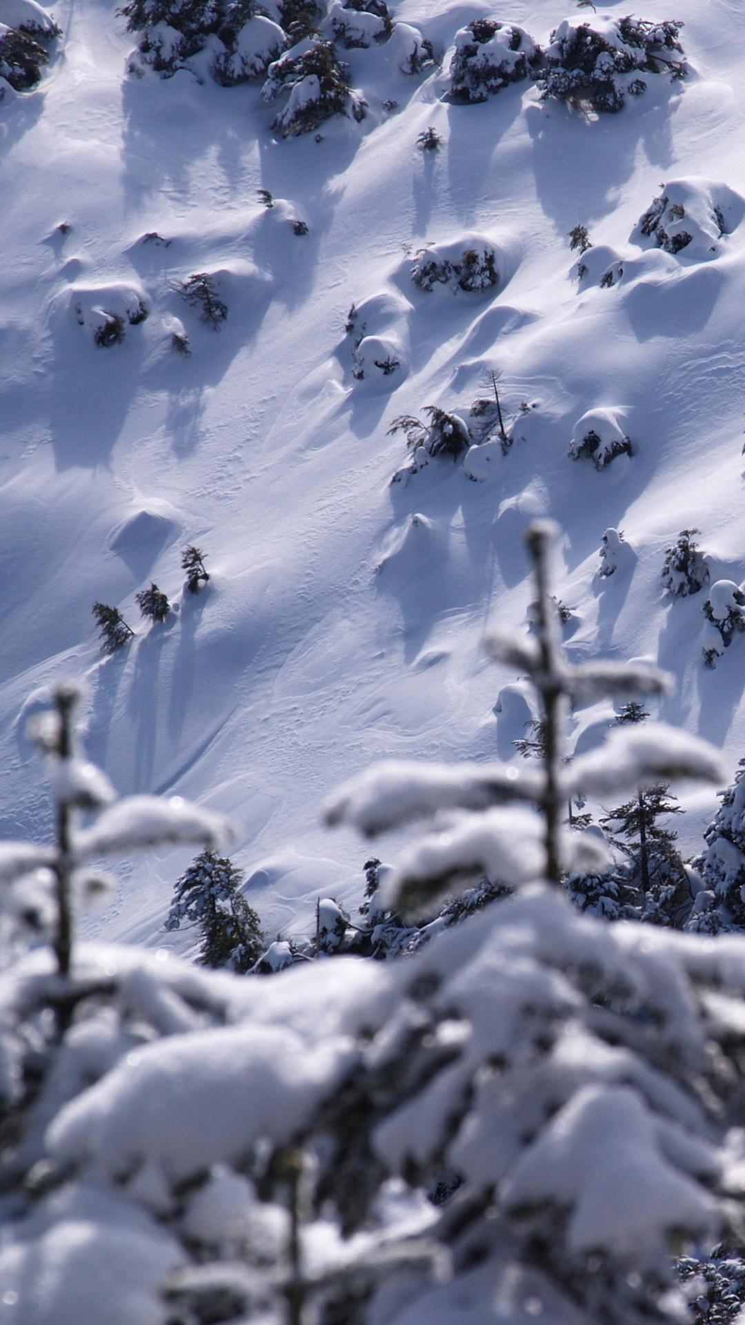 スマホ 壁紙 冬 ベスト キャラクター 壁紙 イラスト 最高の壁紙
